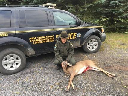 ECO Jackson and the illegally killed doe